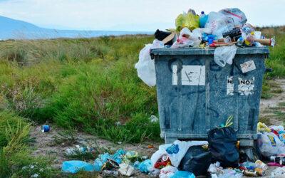 Bioplástico vs plástico reciclado, ¿qué es más ecológico?